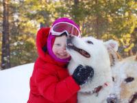 Dog sledding - hundekjøring med Geilo Husky.